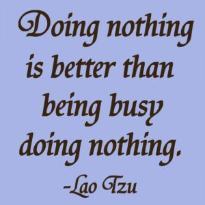 Doing nothing is better than being busy doing nothing. -Lao Tzu